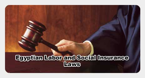 Egyptian Social Insurance and Labor Laws