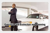 VIP Protection & Planning